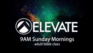 elevate_new_web